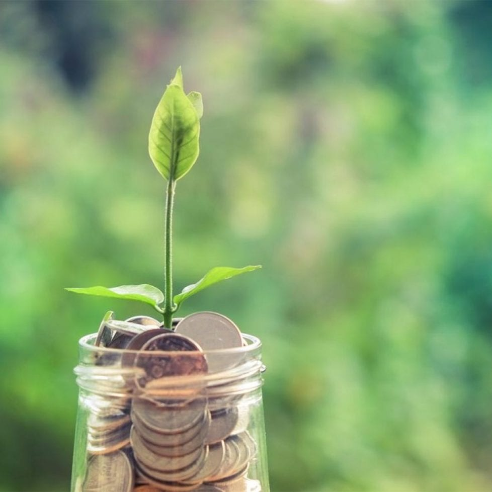 Rise in popularity for venture capital trusts
